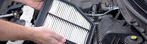 Cabin & Engine Filter
